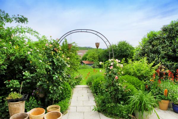 Gruener Landhausgarten im Sommer