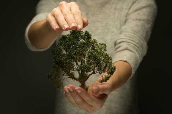 Person haelt Hand schuetzend ueber Baum