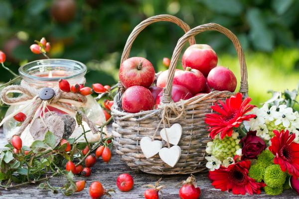 Herbstdekoration mit Laterne, Aepfel im Weidenkorb, Herbstblumen und Hagebutten