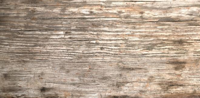 Eine unbehandelte Holzoberfläche