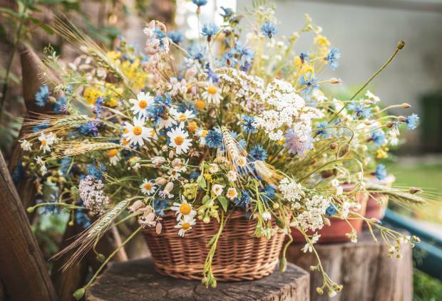 Weidenkörbe für Blumen