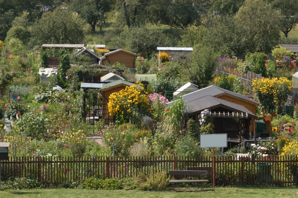 kleingartenanlage-schrebergarten-gestalten-kleingarten