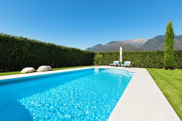 pool-hecke-sichtschutz-poolbereich-gestalten