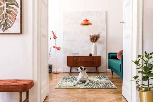 stilvoller-retro-wohnraum-einrichten-im-retrostil