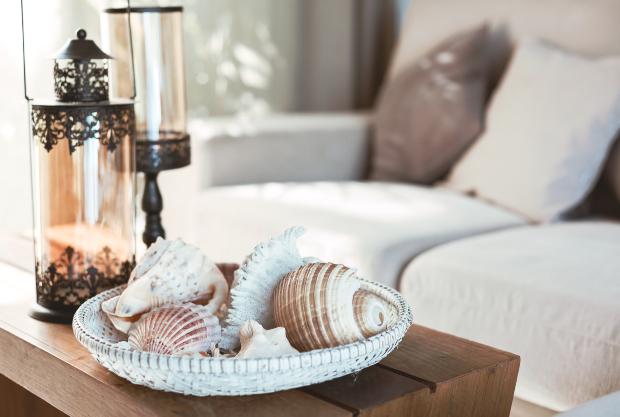 Auf einem Couchtisch sind exotische Muschen drapiert Landhausdeko für Haus und Garten